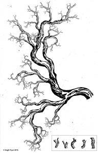 Fractal-Fern-photocopy2