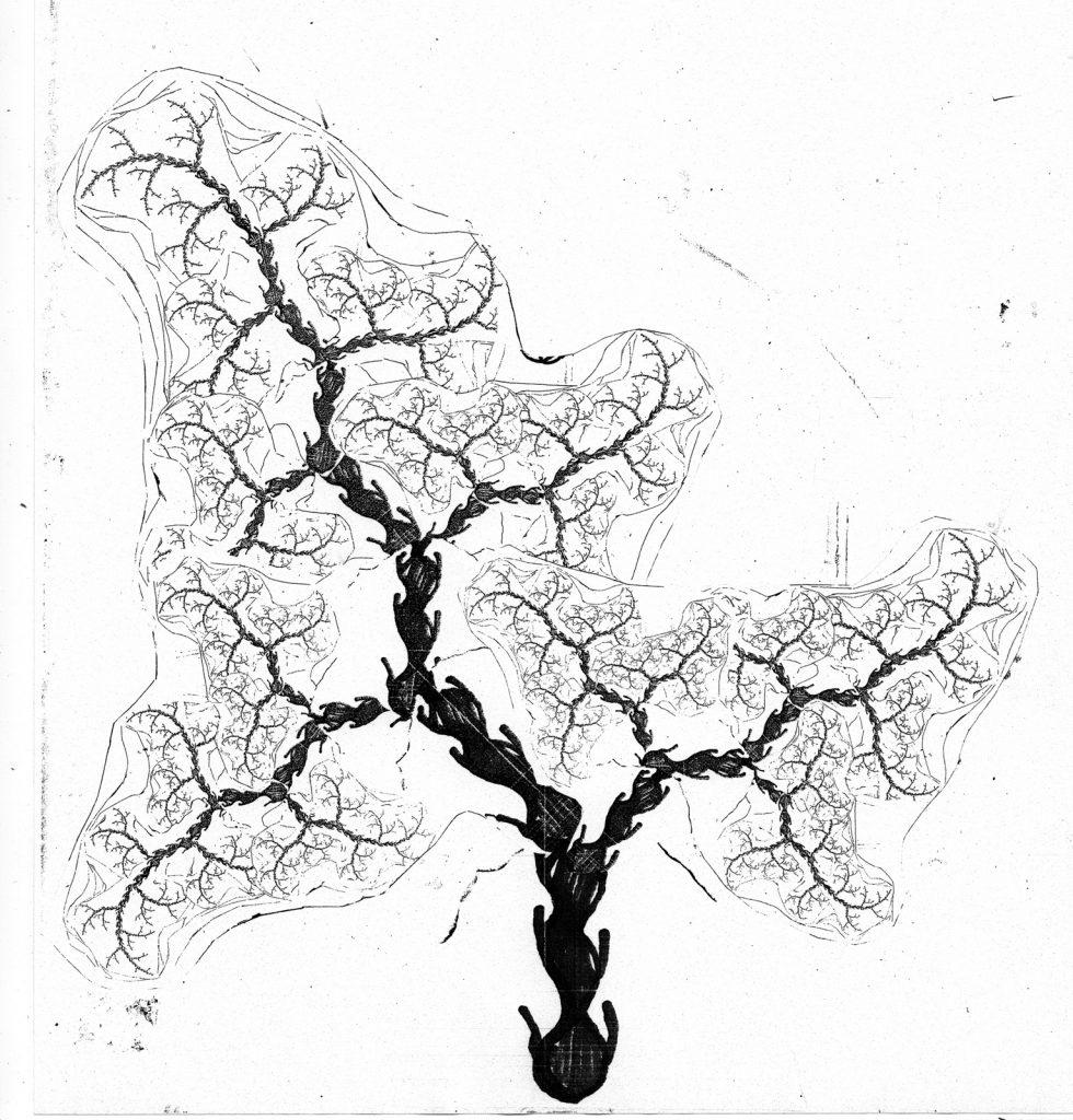 fractal-fern