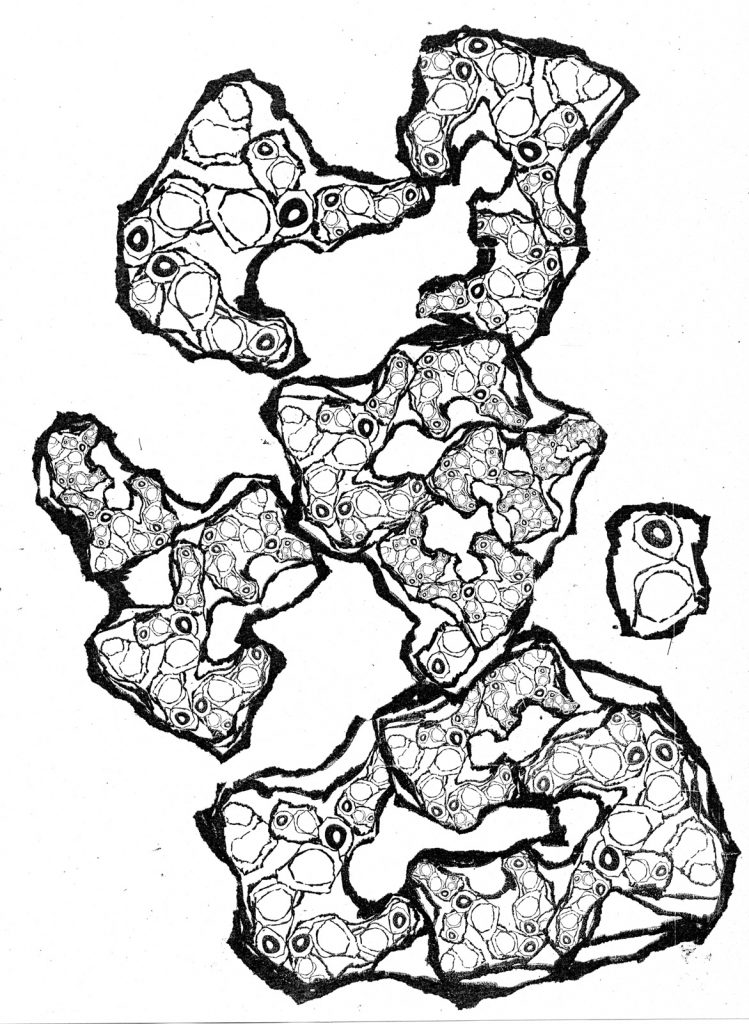 island-Fractal